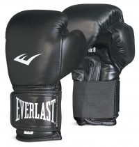 Everlast Boxing Gloves Thai Style EVMTTG2