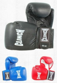 Clinch Boxing Gloves CTGV
