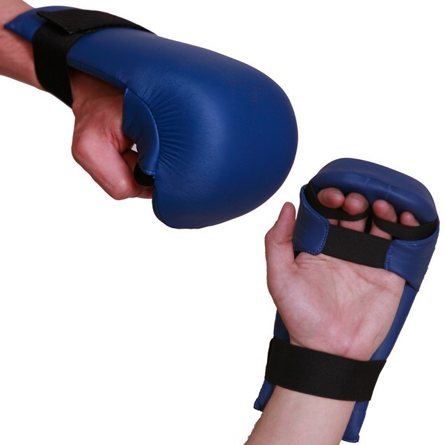 tnKarate_Gloves_Leather_jsm_452_1.jpg
