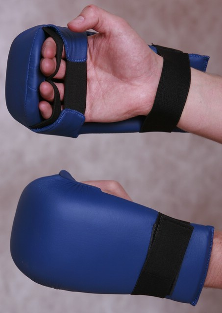tnKarate_Gloves_Leather_jsm_452_2.jpg