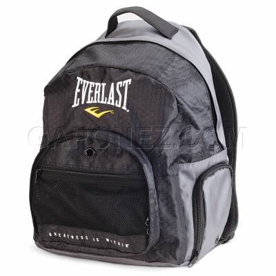 325a6771483d Everlast Boxing Gloves Training/Sparring/Bag Protex2 EVPT2TG 2 (Size ...