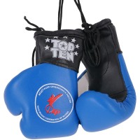 Top Ten Souvenir Boxing Gloves FKR TTQR