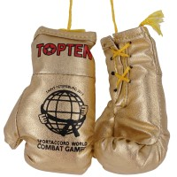 Top Ten Souvenir Boxing Gloves TTGG