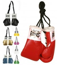 Cleto Reyes Mini Boxing Gloves A000