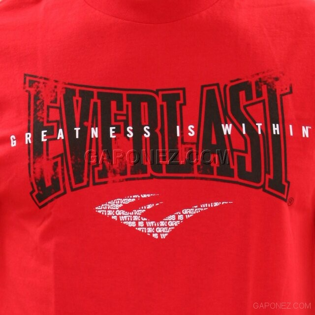 Everlast T-Shirt GIW Distorted TS 173 RD